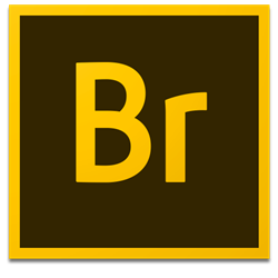 Adobe Bridge CC 2019 v9.0.2.219 for Mac中文破解版 资源管理工具