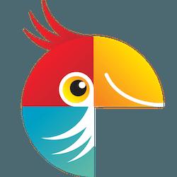 Movavi Photo Editor for Mac v6.5.0 中文破解版下载 图片编辑软件