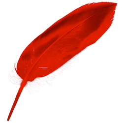 iCalamus for Mac v2.19 英文破解版下载 版面设计软件