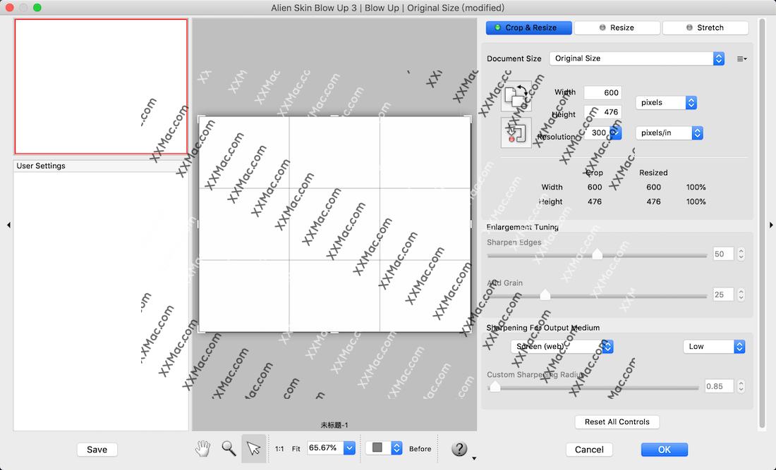 Alien Skin Blow Up 3 for Mac v3.1.3.274 英文破解版下载 PS无损放大插件