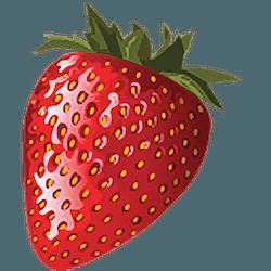 Cook'n for Mac v12.14.6 英文破解版下载 菜谱软件
