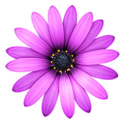 TextMate for Mac v2.0 rc.23 英文破解版下载 代码编辑器