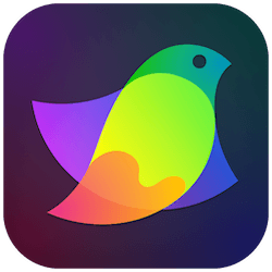 Amadine for Mac v1.0.7 英文破解版下载 矢量图形设计软件