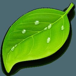 Coda 2 for Mac v2.7.5 英文破解版下载 网页编程工具