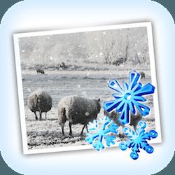 JixiPix Snow Daze for Mac v1.26 英文破解版下载 照片加雪特效软件