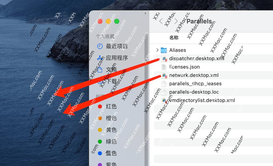 解决 Parallels Desktop 16 在Big Sur系统无法联网等问题