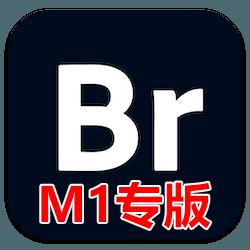 Bridge 2021 M1 芯片版 v11.1.0 中文免激活版下载 Br资源管理软件